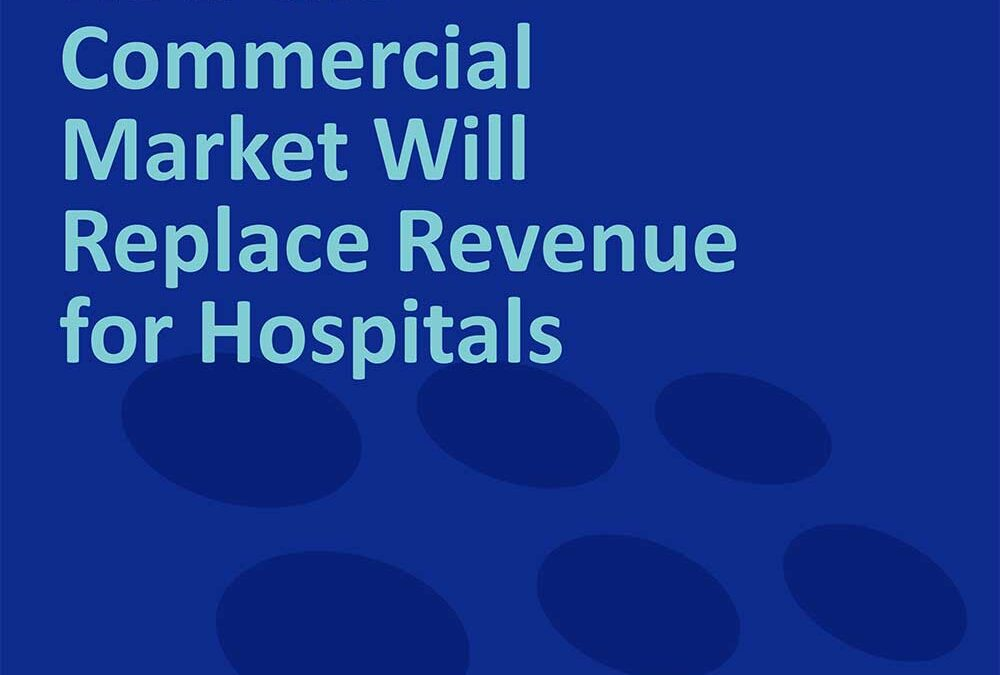 Applied Health Analytics Whitepaper How the Commercial Market Will Replace Revenue for Hospitals